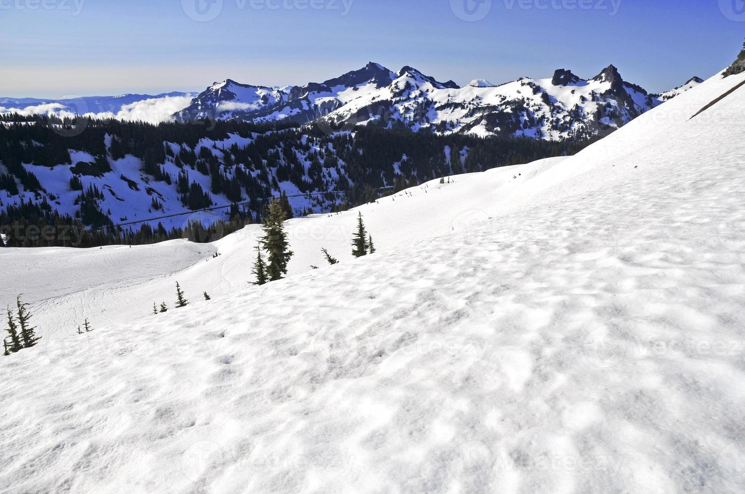 scena alpina attorno al monte Rainier, cascate nord, Washington foto