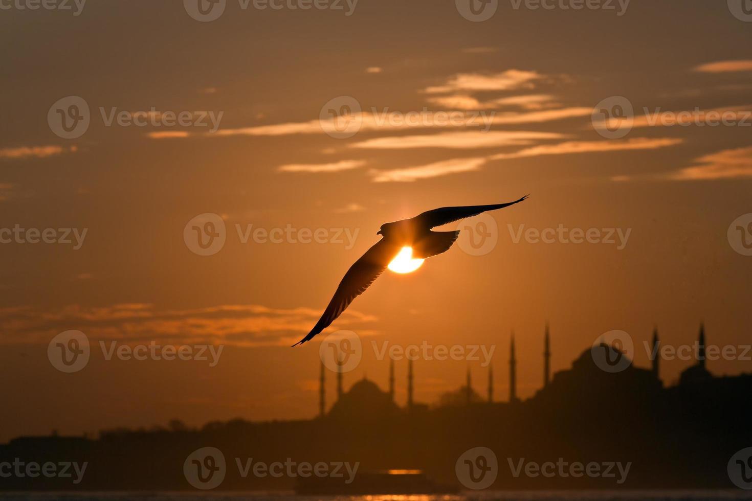 sagoma di Istanbul foto