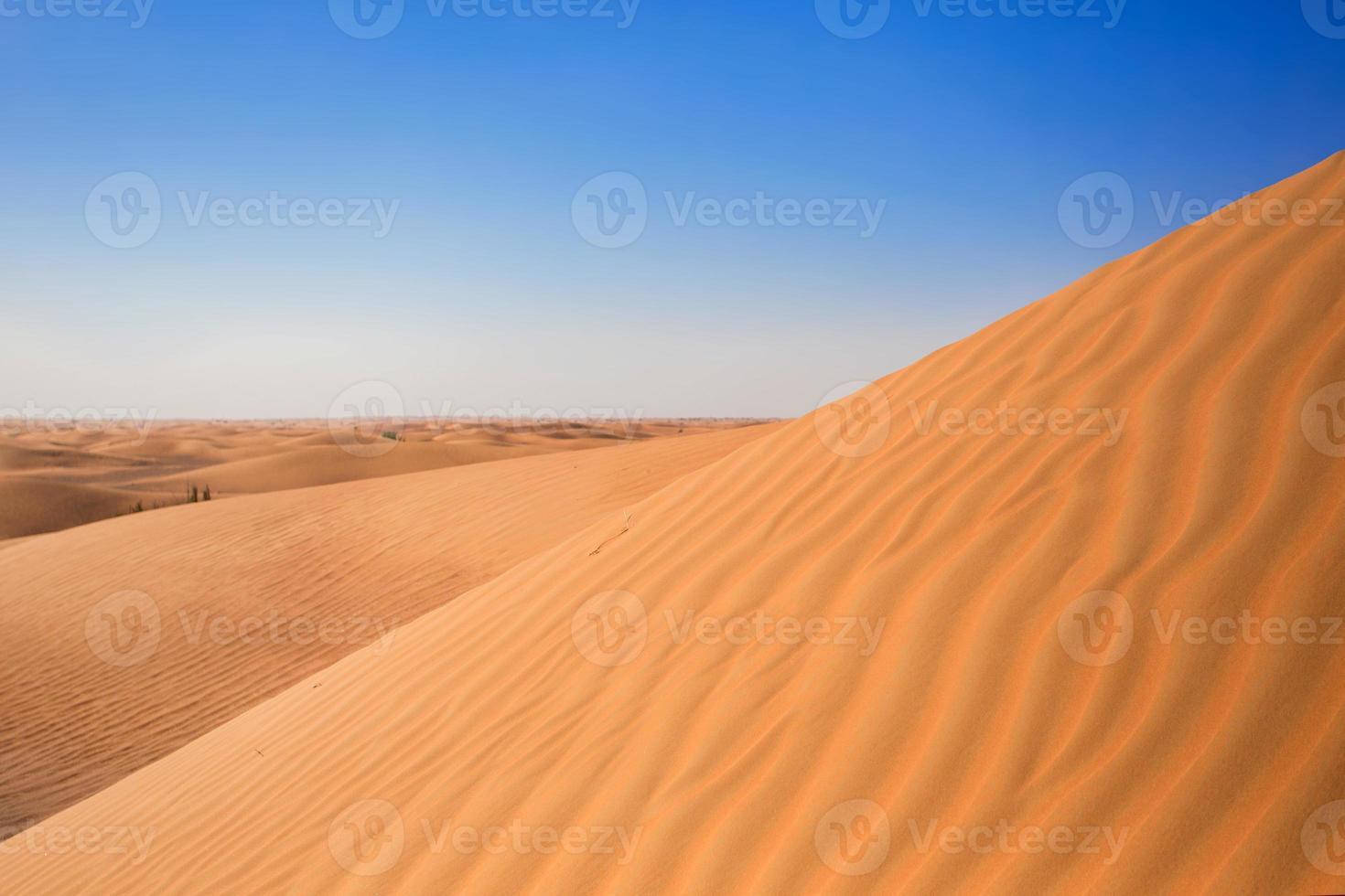 colline di sabbia del deserto foto