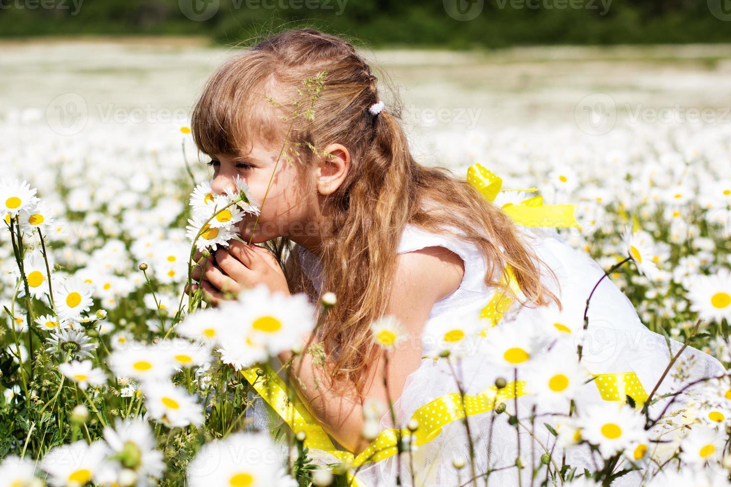 ragazza graziosa del bambino al campo della camomilla foto