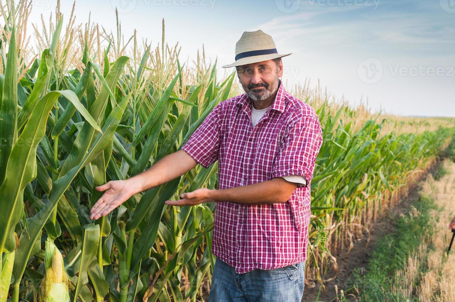 contadino foto