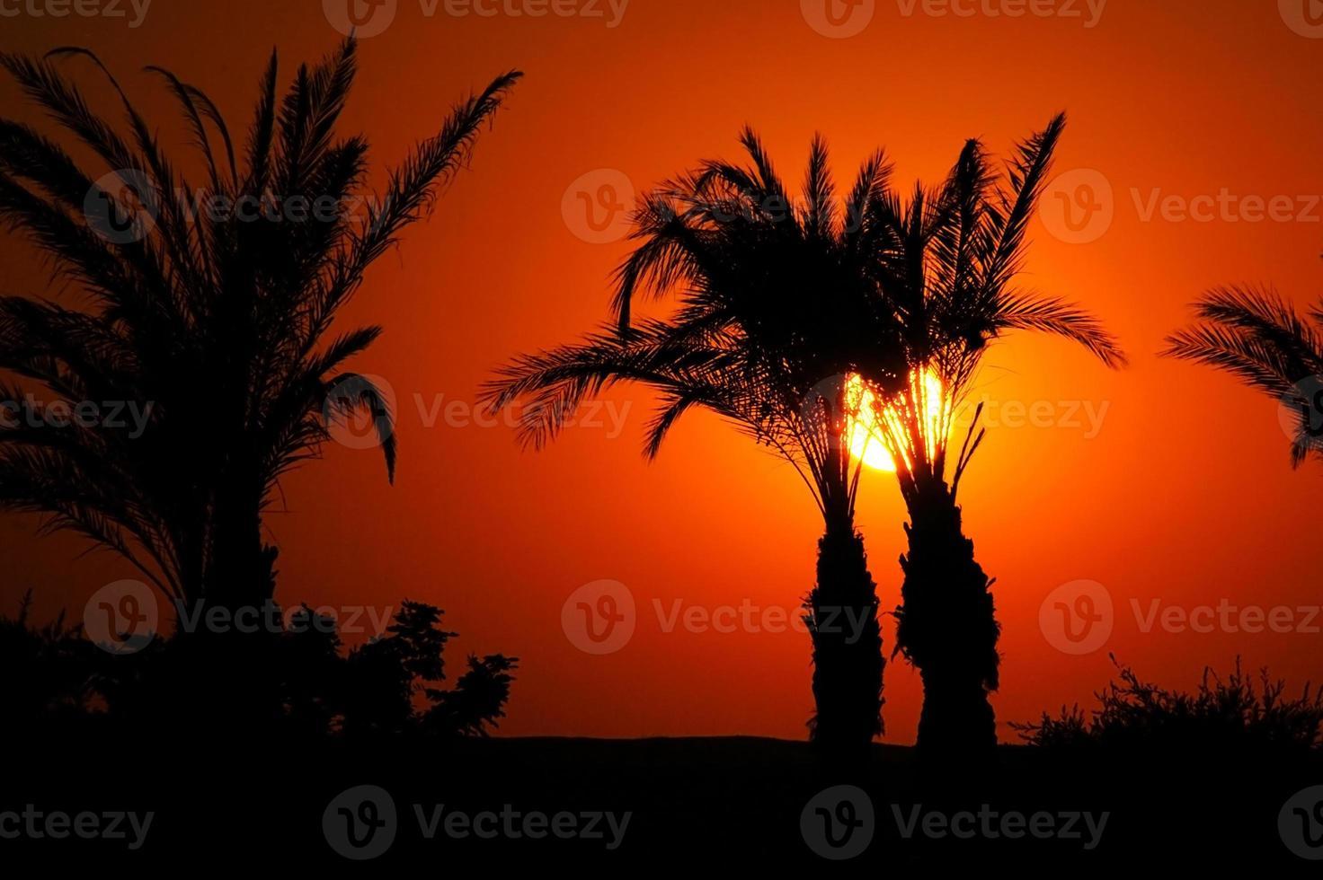 tramonto in egitto foto