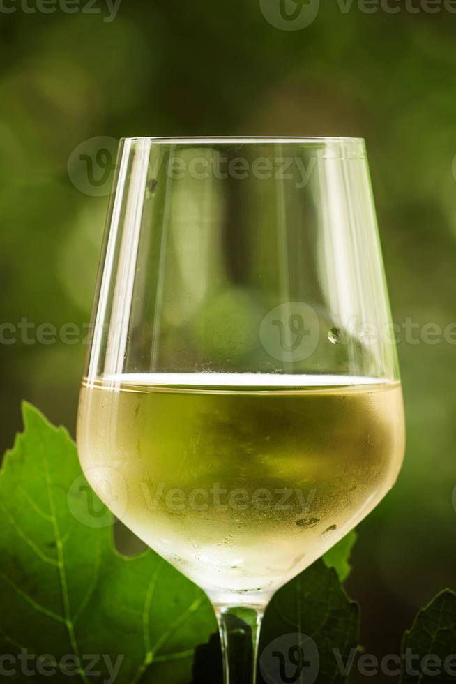 coid vino bianco e uva verde su sfondo sfocato naturale foto