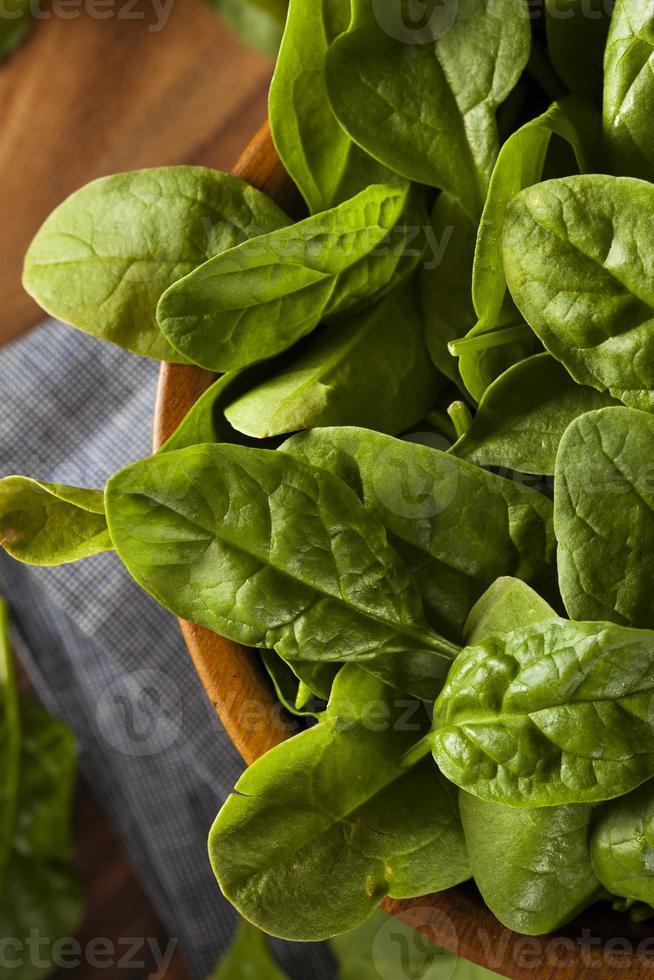 spinaci biologici verdi grezzi foto