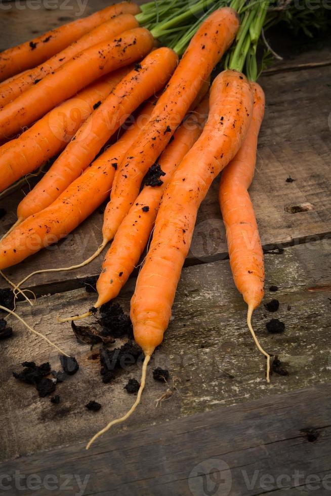 mazzo di carote su legno foto