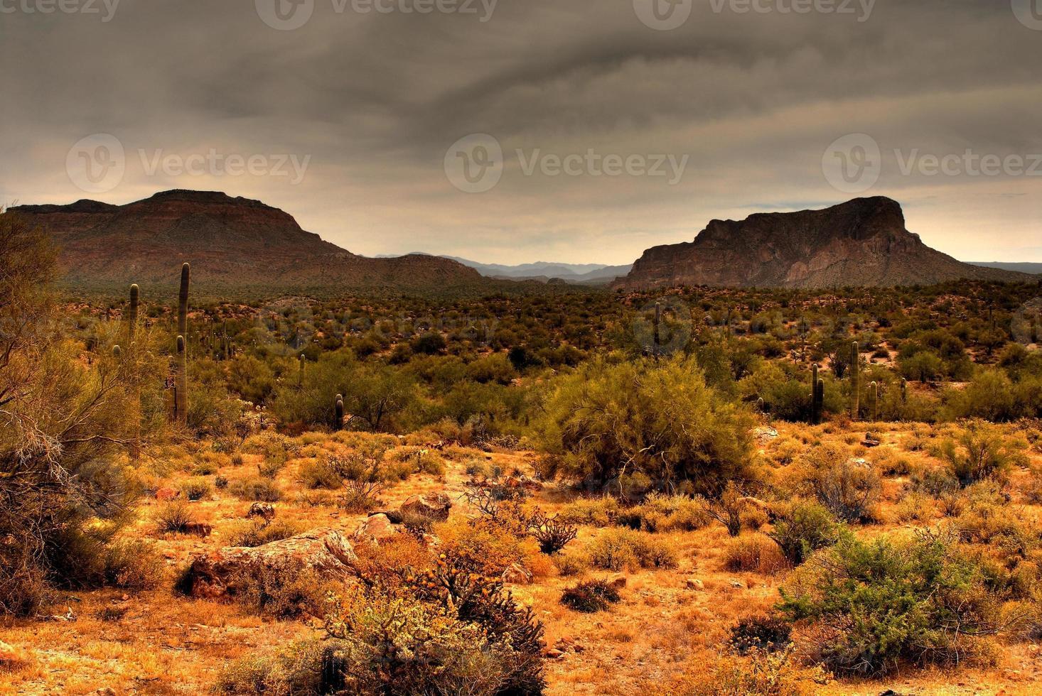 tempesta del deserto che si avvicina foto