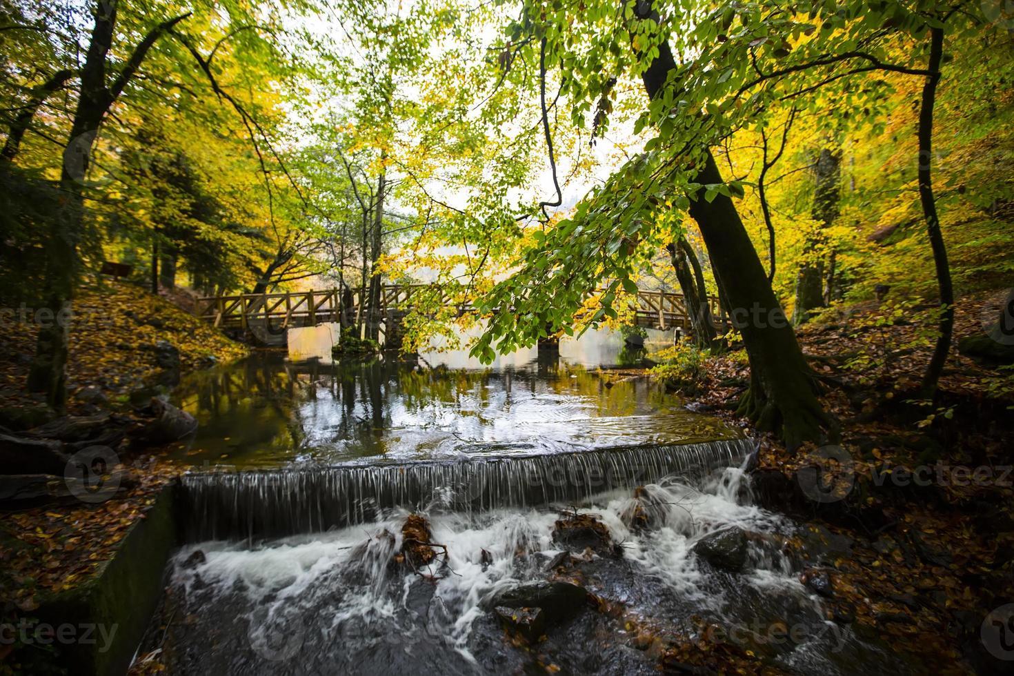 fiume foto