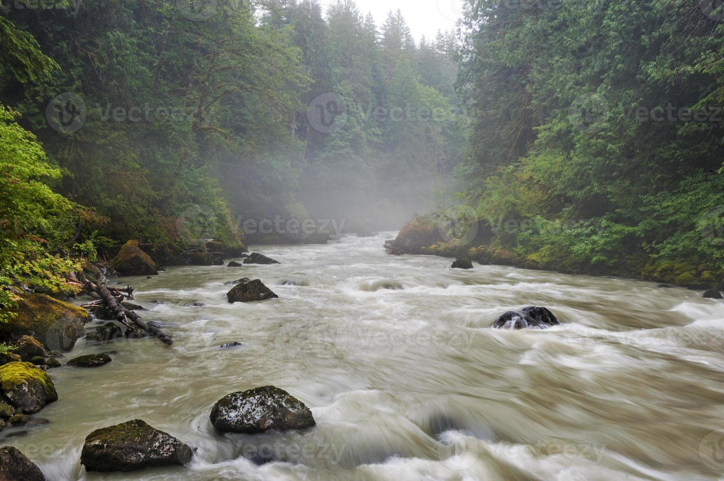 fiume Nooksack. foto