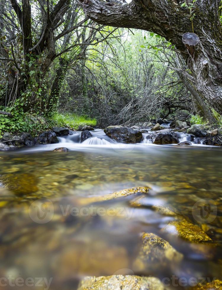 paesaggio fluviale foto