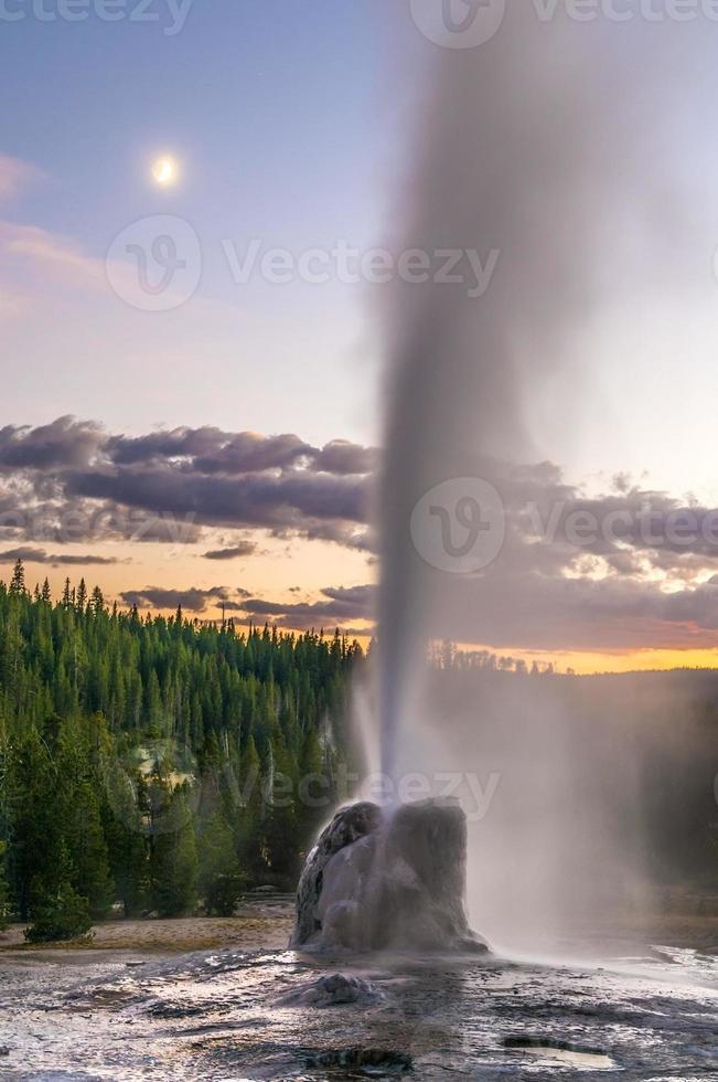geyser a stella solitaria foto