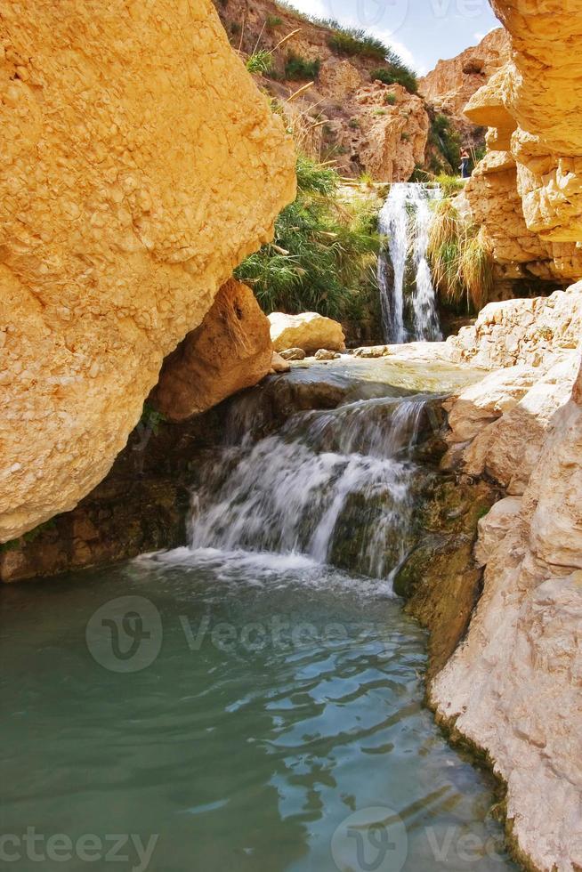 acqua di fonte foto