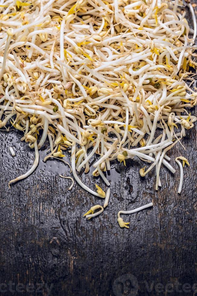 germogli di soia freschi su vecchio fondo di legno scuro, vista dall'alto foto