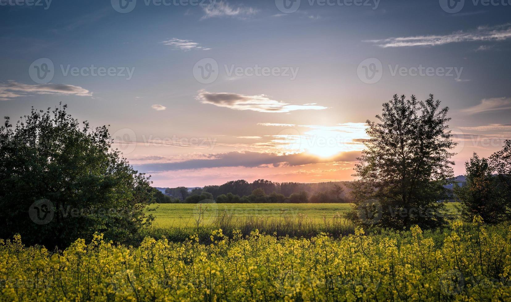 paesaggio di campagna foto