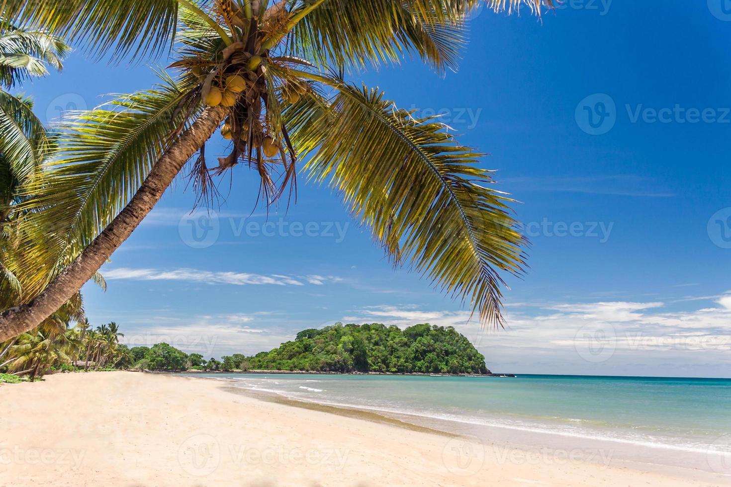 paesaggio tropicale della spiaggia foto