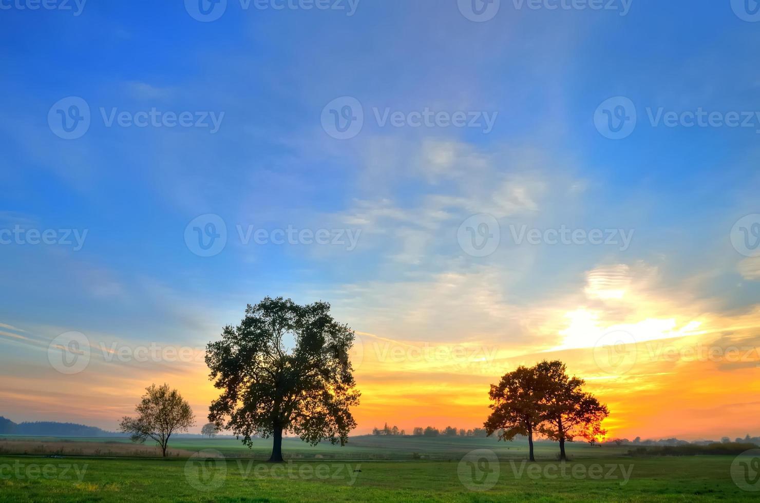 paesaggio autunnale. foto