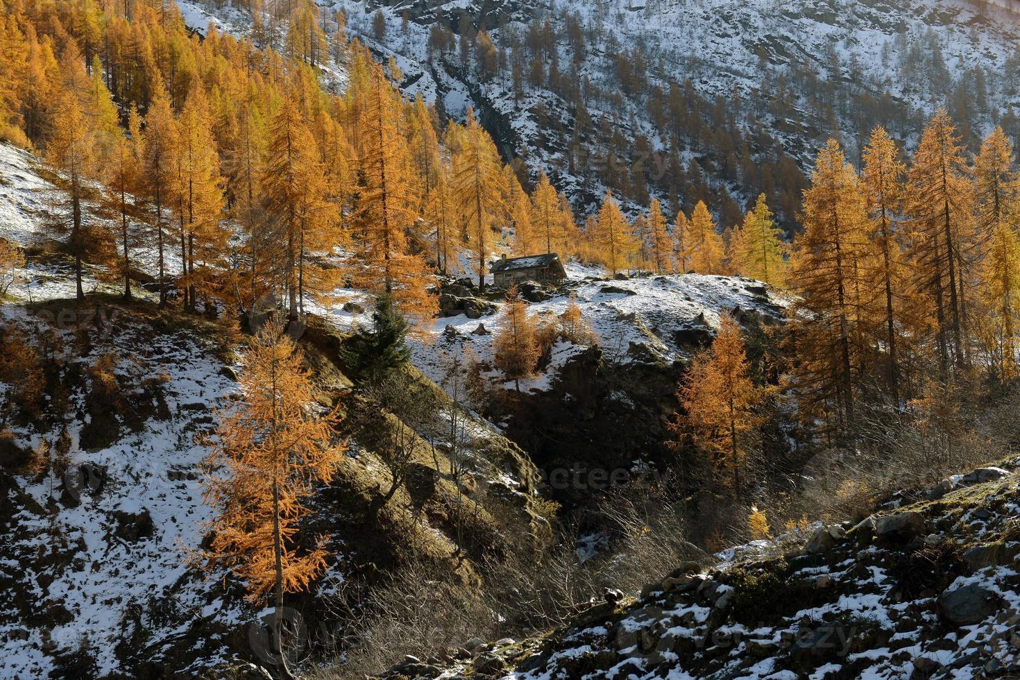 paesaggio autunnale nelle alpi foto