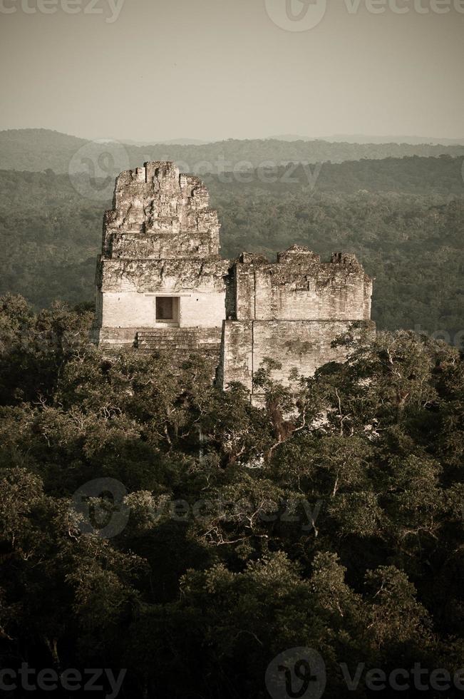 piramidi Maya di Tikal foto