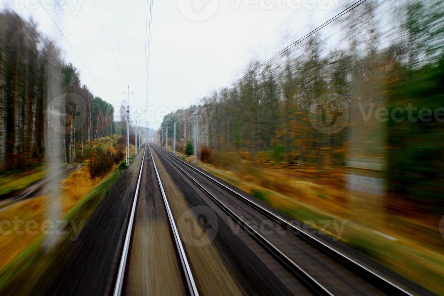 foresta in esecuzione del treno foto