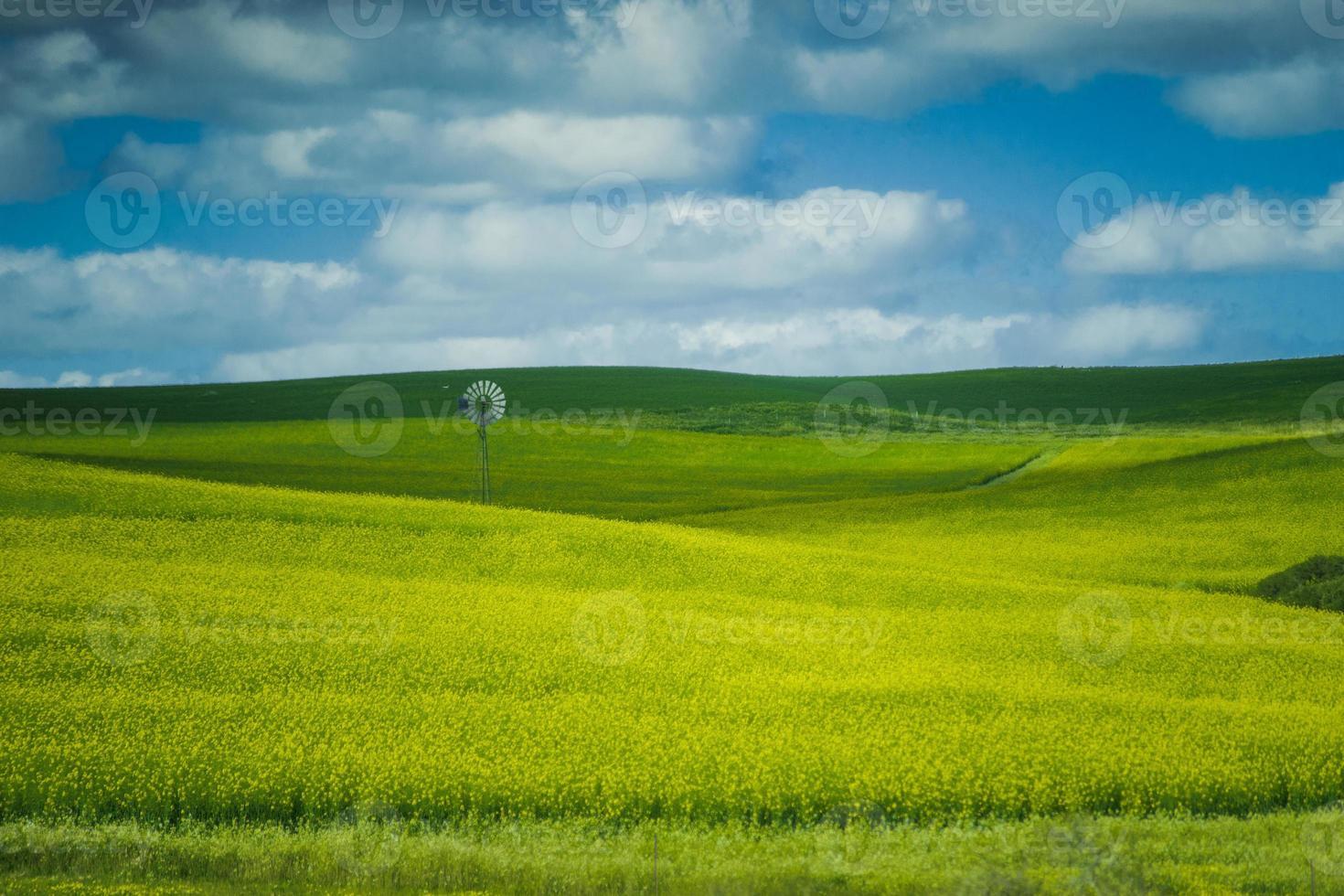 mulino a vento in fattoria foto