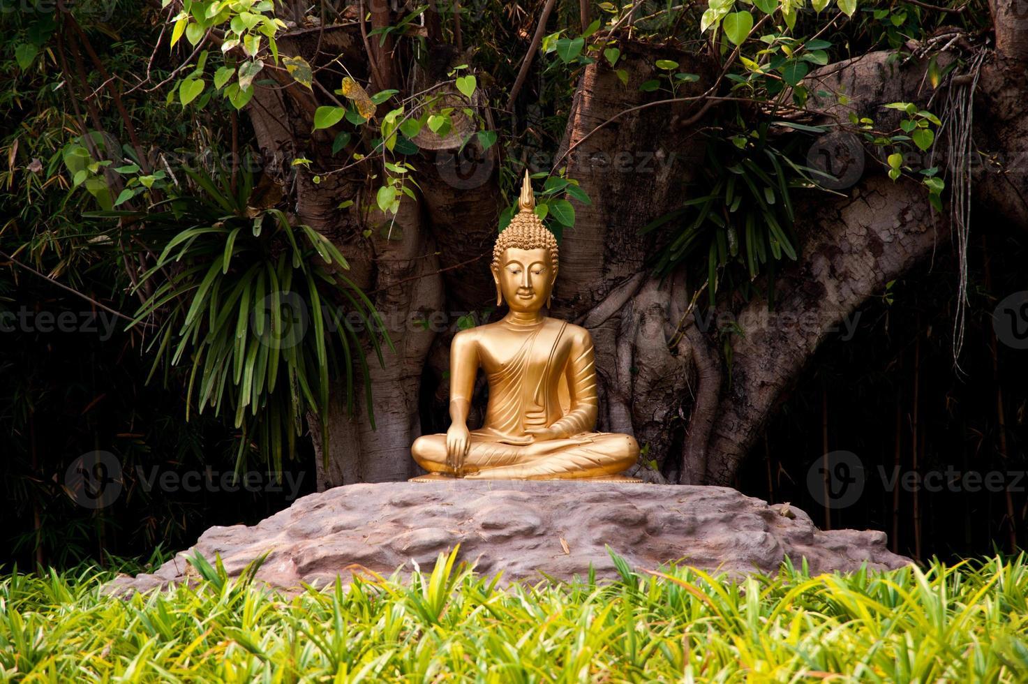 statua di Buddha in giardino foto