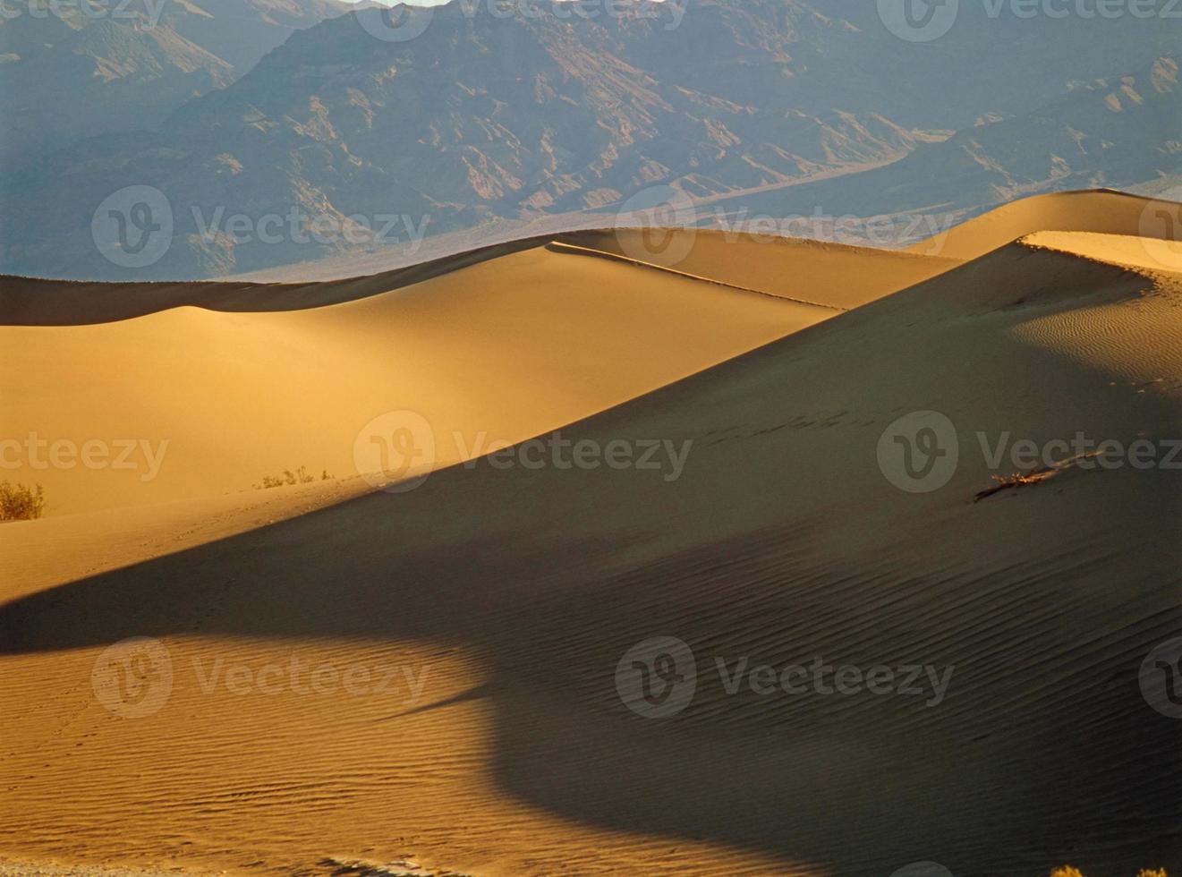 dune di sabbia foto
