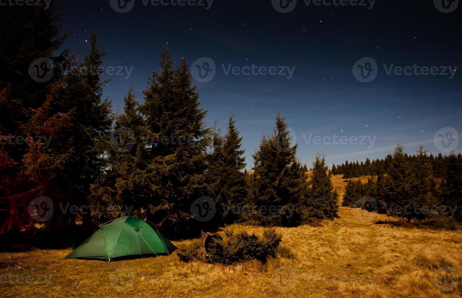 tenda illuminata con luce nella foresta di notte foto