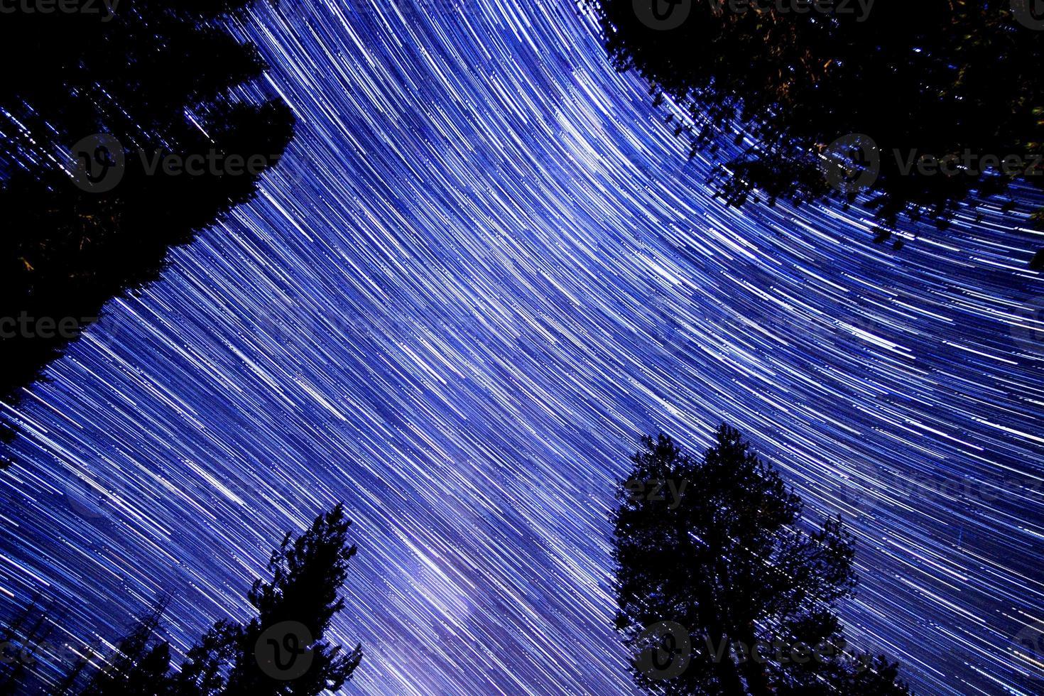 tracce di stelle nella foresta nazionale di sequoia foto