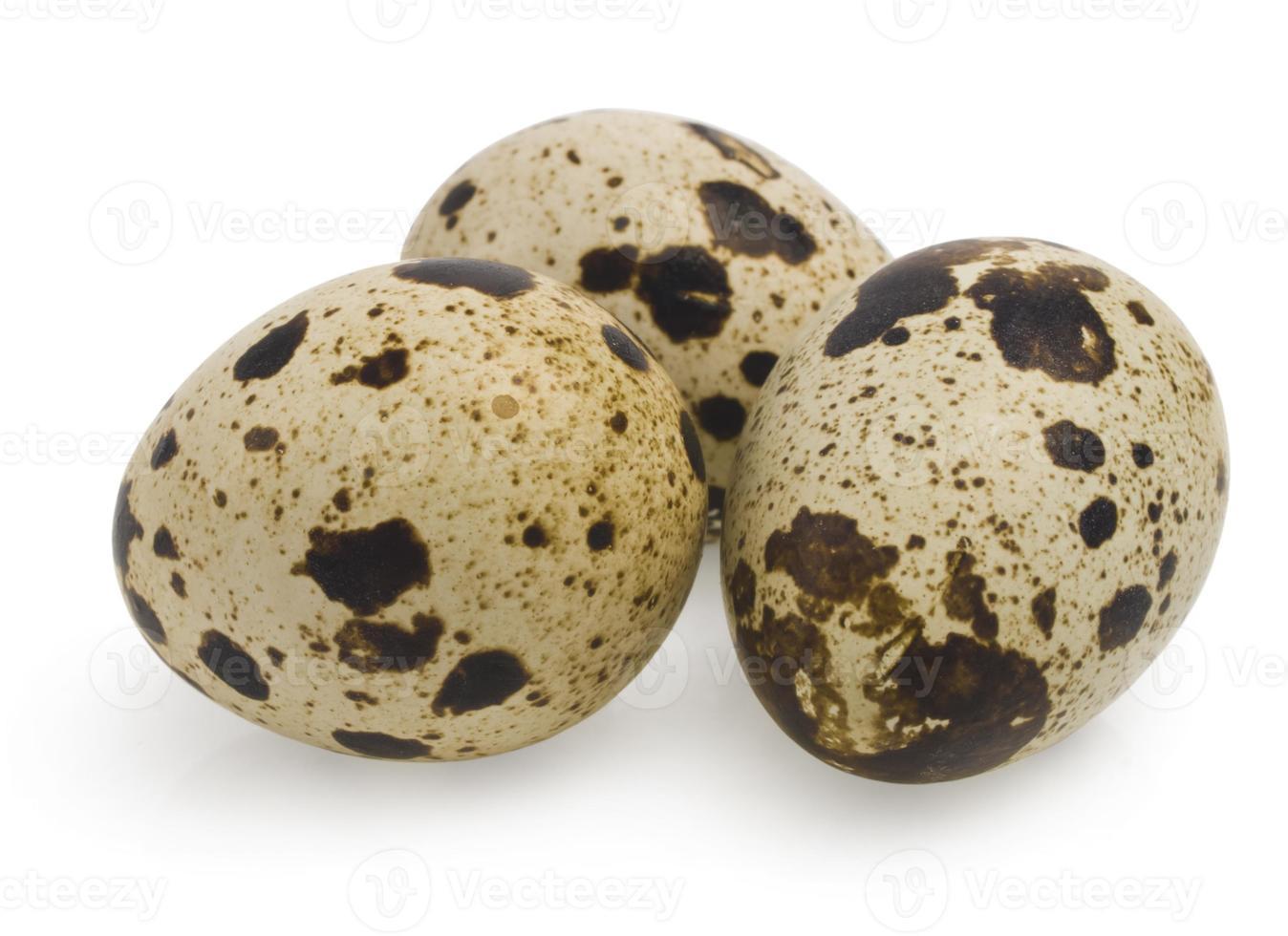 uova di quaglia su bianco foto