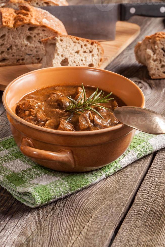 zuppa di gulasch. foto