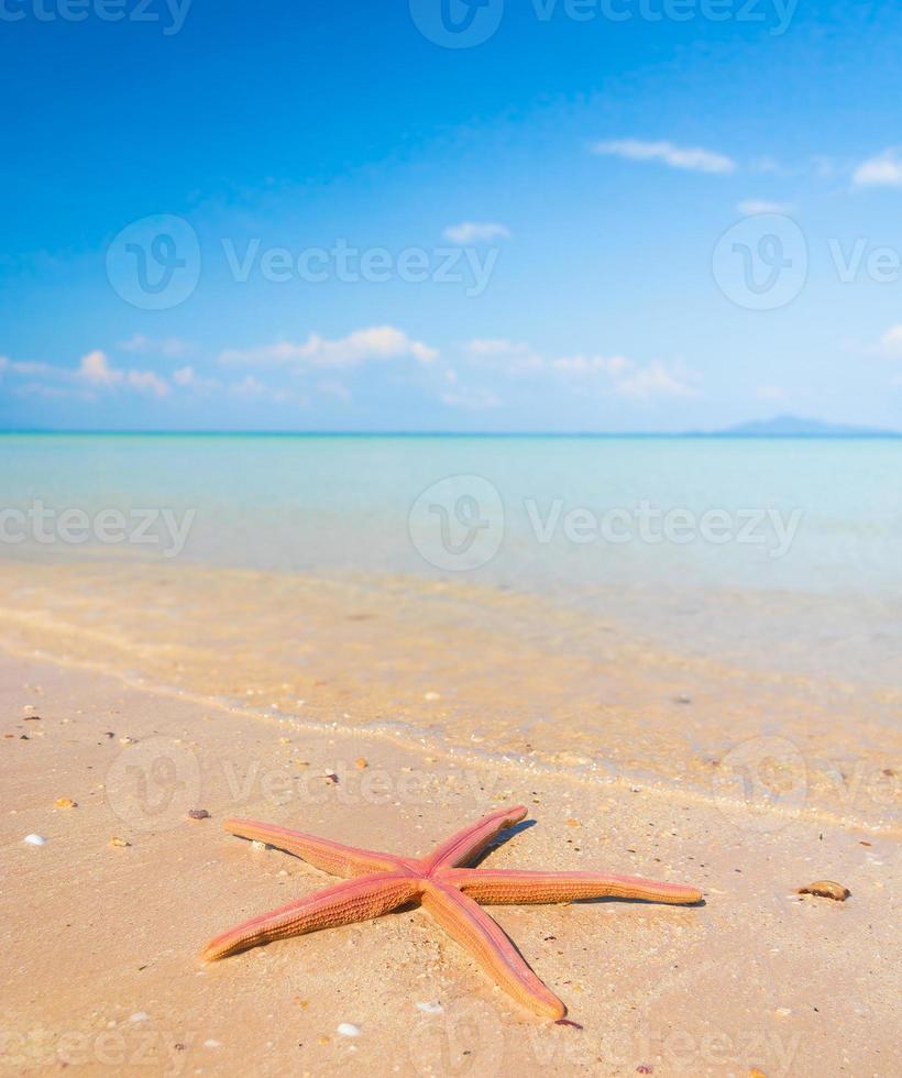 paesaggio acquatico foto