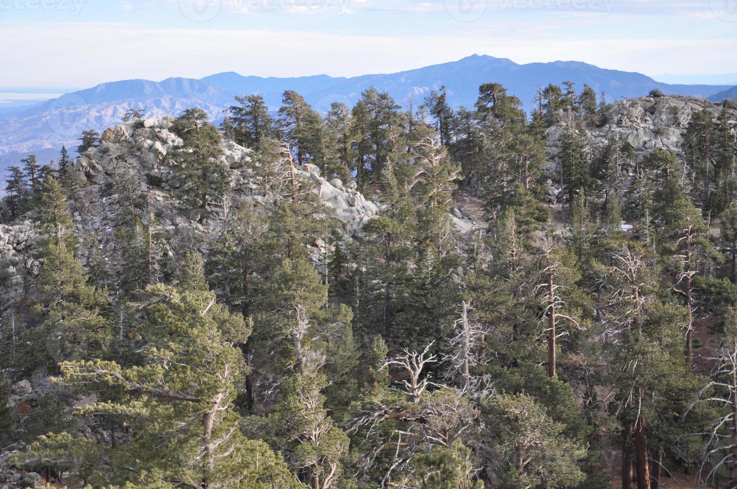 vista dalla tramvia aerea di palm springs in california foto
