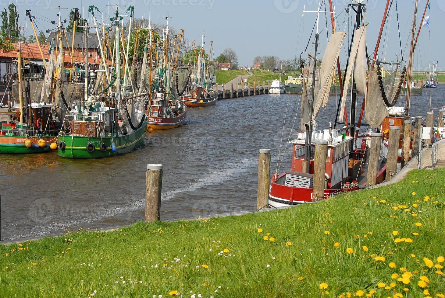 Hafen foto