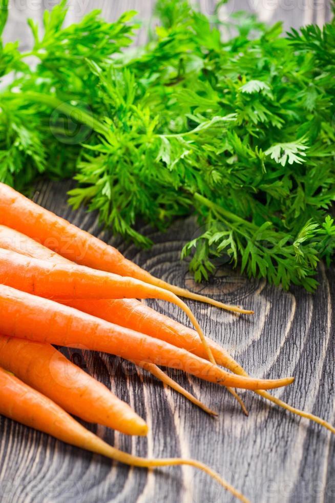 carota fresca biologica foto