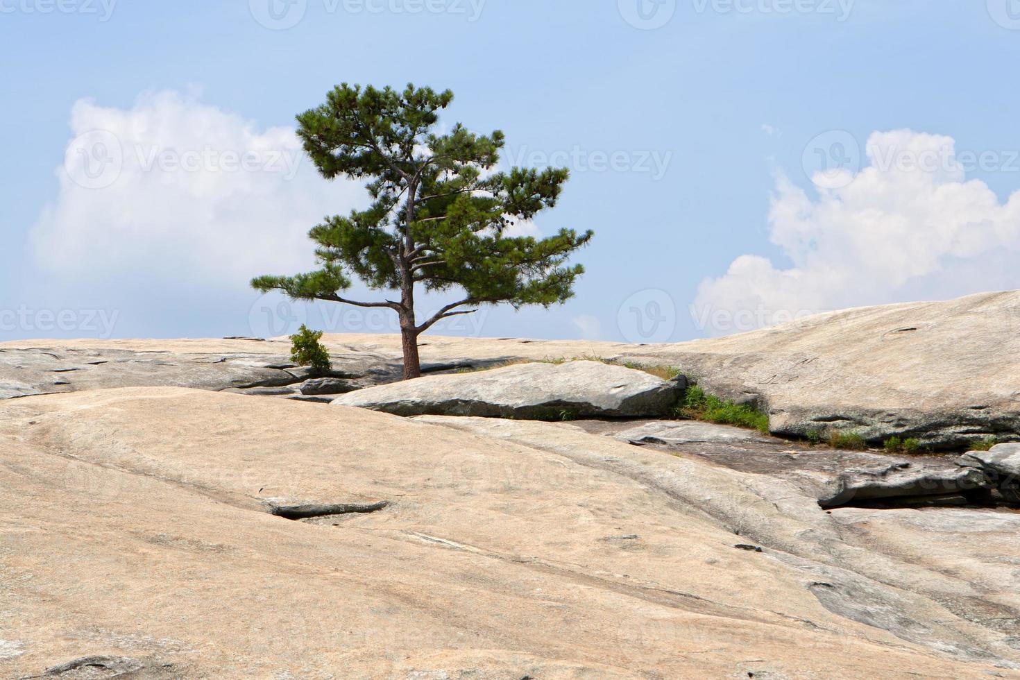 la superficie della montagna di pietra. Atlanta, Georgia foto