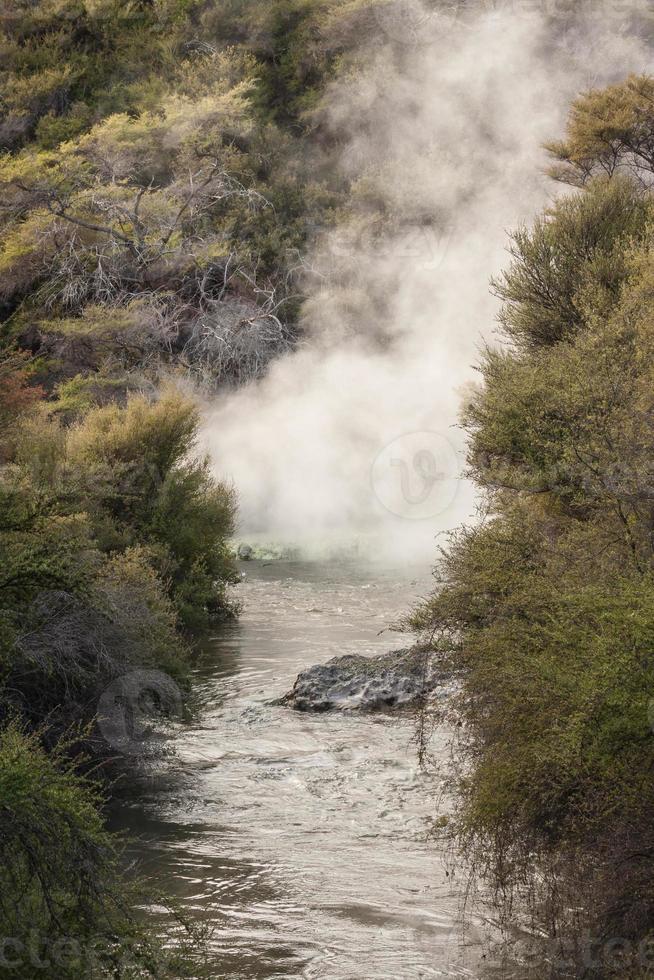innalzamento del vapore dalla sorgente termale di Rotorua foto