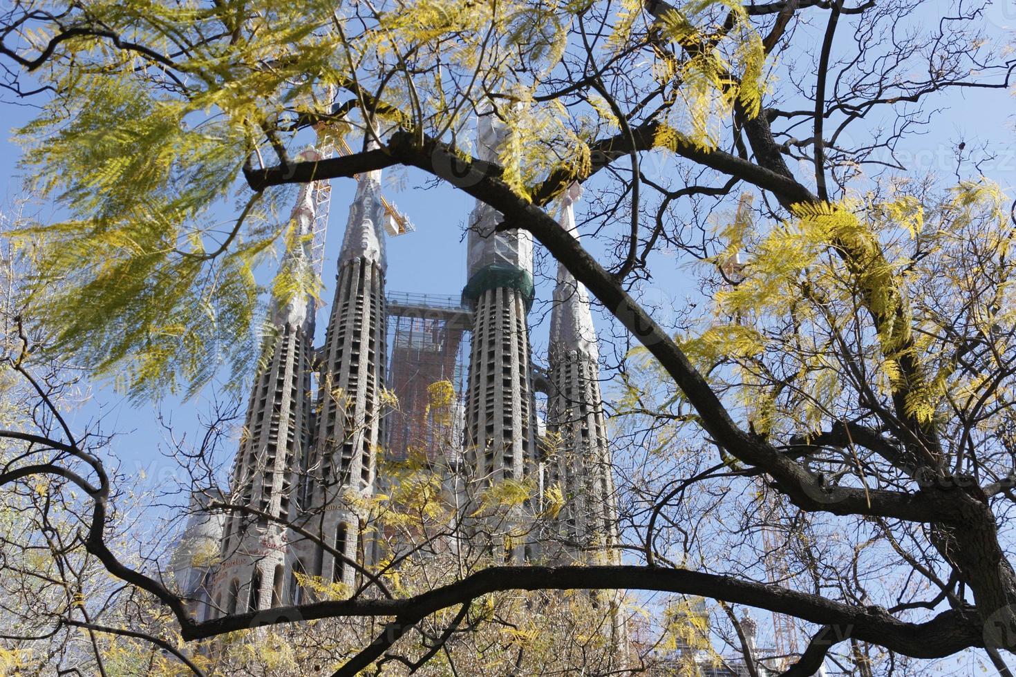chiesa della Sagrada Familia attraverso le foglie di primavera foto