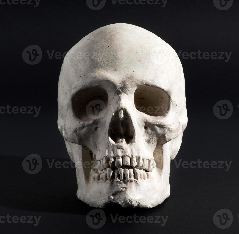 teschio umano su uno sfondo nero foto