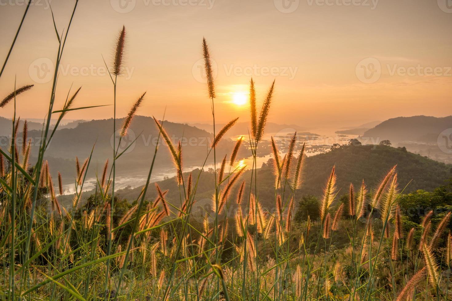 paesaggio dell'alba foto