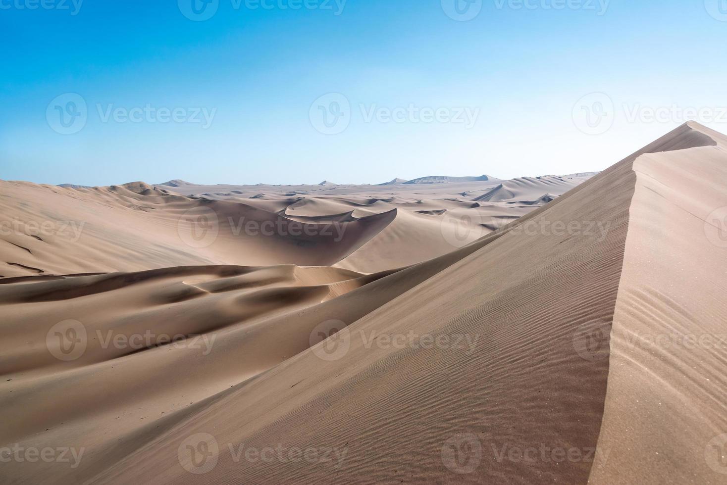 paesaggio desertico di dune di sabbia foto