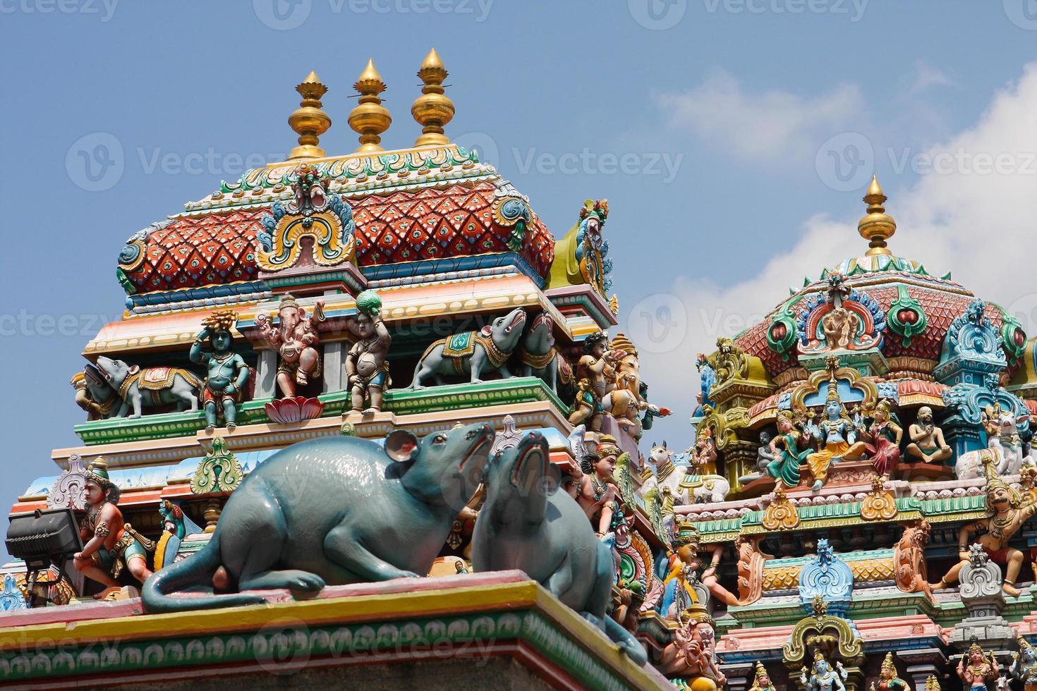 tempio di Kapaleeshwarar foto