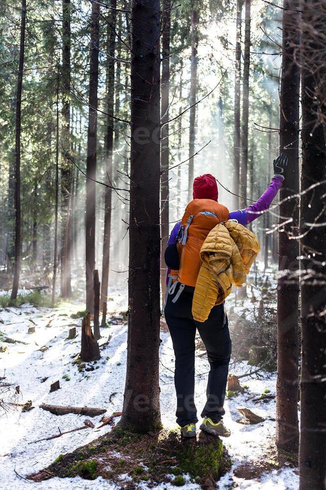 donna che fa un'escursione nella foresta di inverno foto