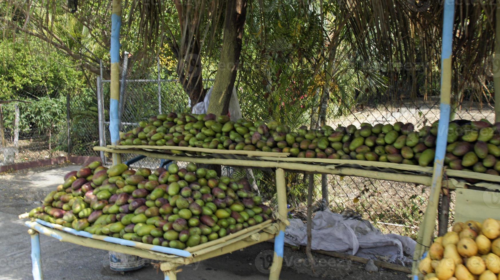 mercato della frutta foto