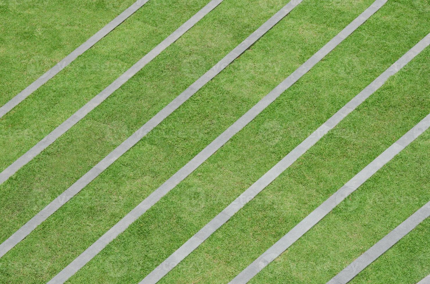 modello di erba foto