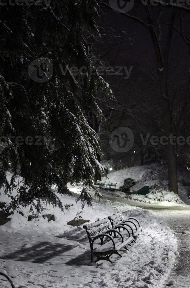 Central Park nella neve, 3 del mattino foto