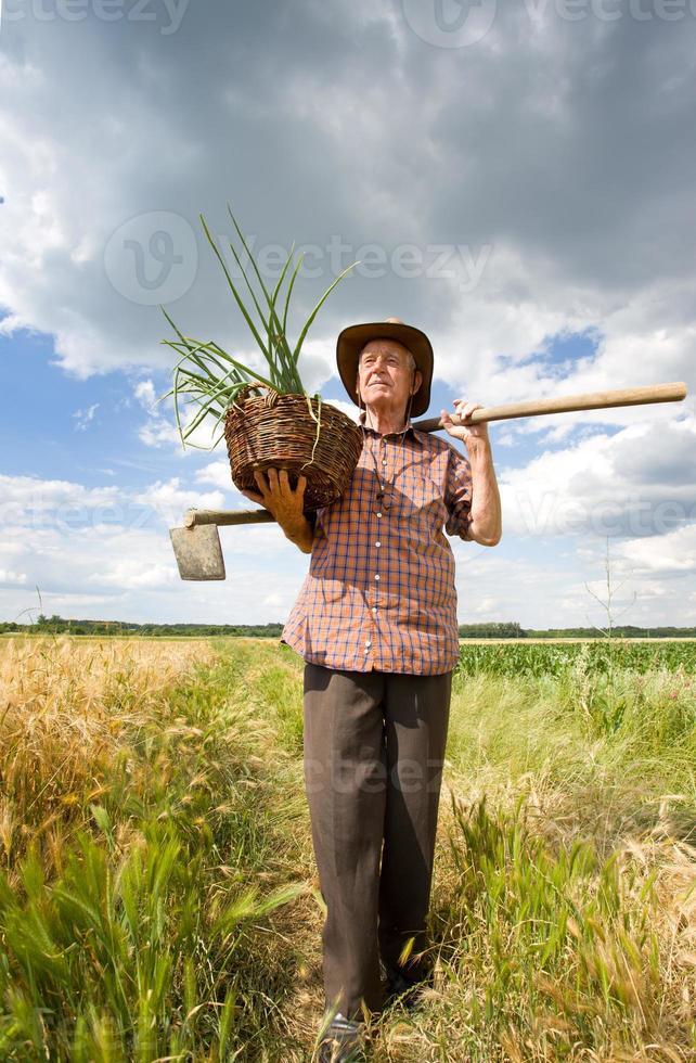 vecchio contadino foto