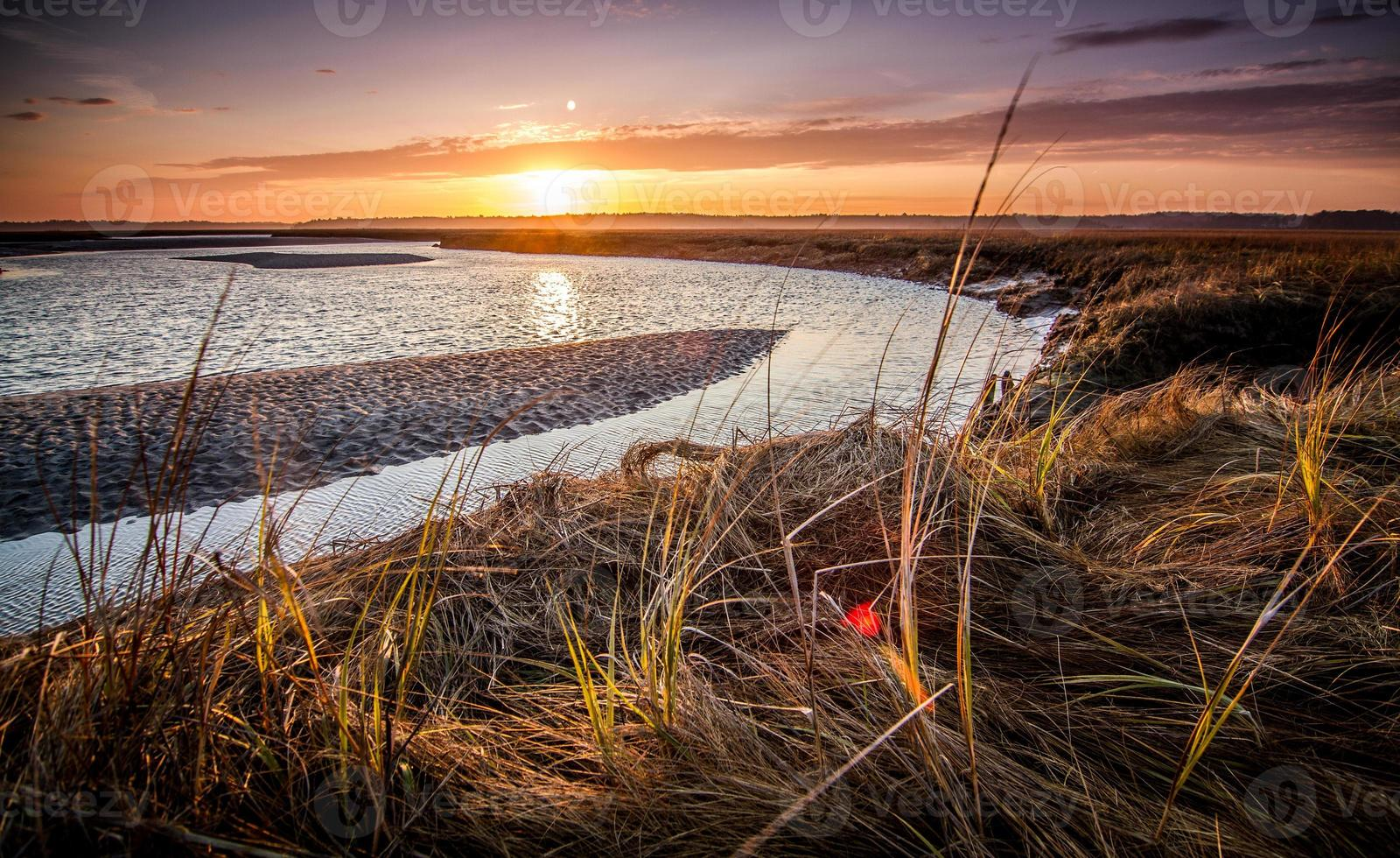 tramonto sopra la palude foto