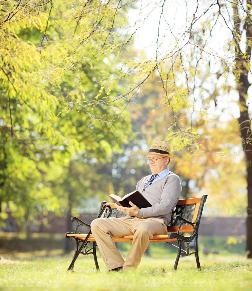 uomo anziano con seduto sulla panchina e leggere un romanzo foto