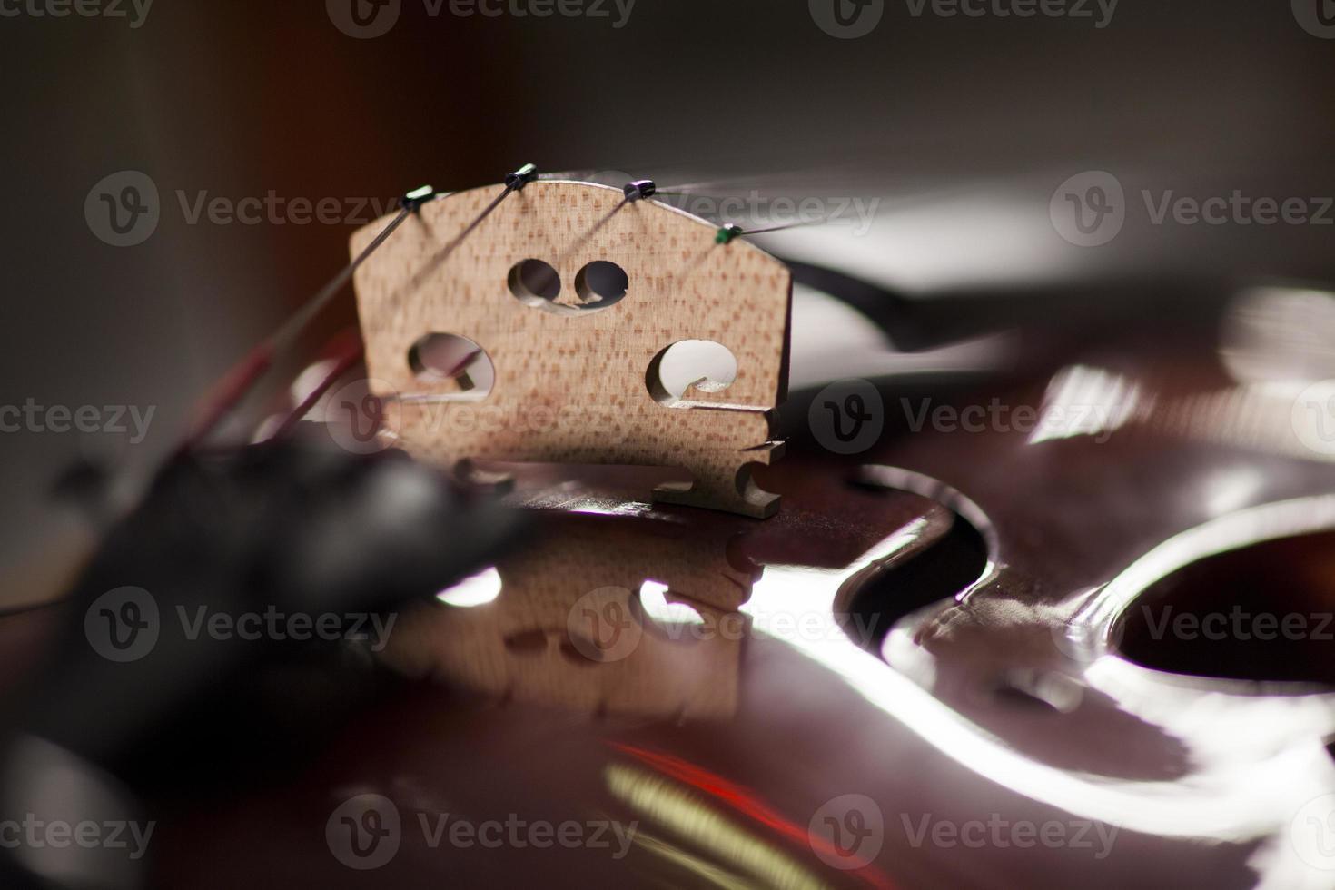 macro di violino (primo piano) foto