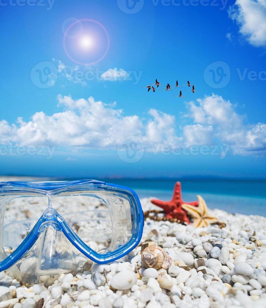 maschera subacquea e stelle marine sotto uno stormo di fenicotteri foto
