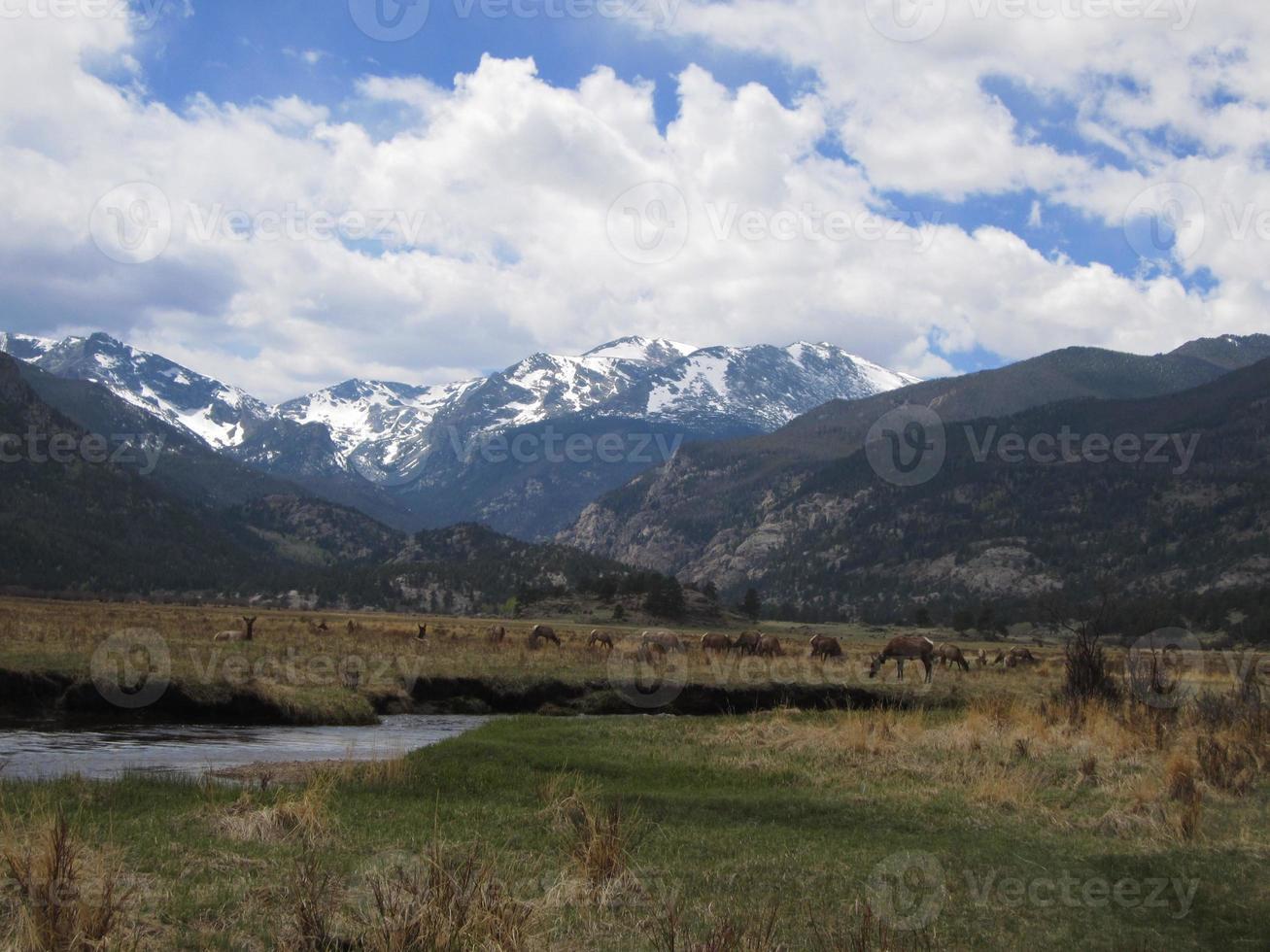 montagne rocciose panoramiche di colorado foto